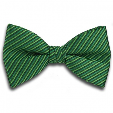 Plain Green Ready Tied Bow Tie with Diagonal Stripe